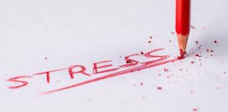 stres na fx